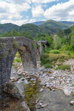 bridge at the Ardeche
