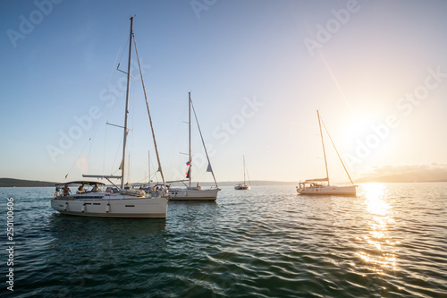 Sailing yachts in sunset light.
