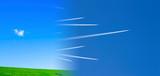 Terra pulita e inquinata - 250225218