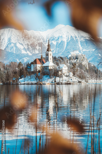 Lake Bled with Bled Island and Castle at sunrise in winter, Slovenia © JFL Photography