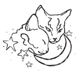 Vector drawing illustration/ simple line design/ two cute cats together/moon and stars/ love