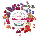 Backgrond with round emblem, type design and berries - 250241249