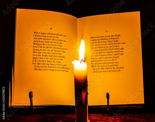 Open book of Shakespeare © MilesBeforeIsleep