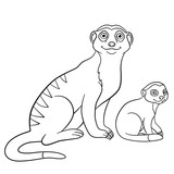 Coloring pages. Mother meerkat with her cute baby.