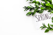 Quadro Spring concept. Hand lettering text spring near green branches and leaves on white background top view copy space