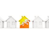 House with flag of bhutan - 250382438