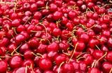 Kirschen frisch Bio Obst Essen
