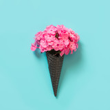 Pink phlox flower in waffle cone on blue background.