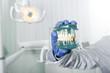 Leinwanddruck Bild - cropped view of dentist in latex glove holding teeth model