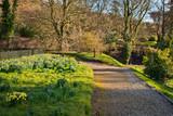 Old English garden in spring