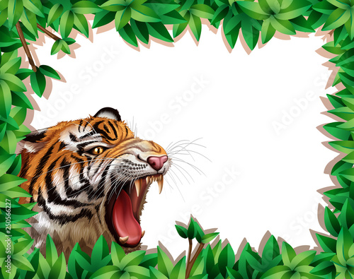Tiger in leaf frame