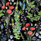 Watercolor painting seamless pattern with beautiful wildflowers, leaves, branches. Meadow illustrastion
