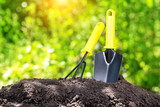 Garden tools in pile of ground against foliage - 250618036