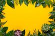 Quadro  Green plant on the yellow background. Retro vintage style.