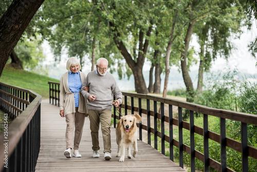 Leinwandbild Motiv happy smiling couple walking with adorable dog in park