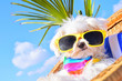 Leinwanddruck Bild - funny dog with sunglasses