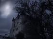 Leinwanddruck Bild - Creepy old tower at night