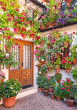 Nice patio with flowers and pond in Cordoba, Spain