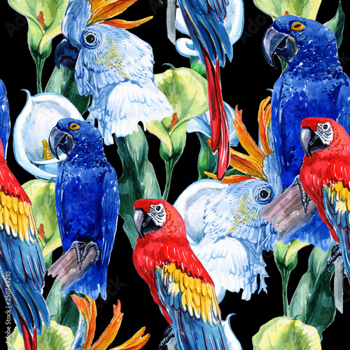 Watercolor seamless pattern of tropical leaves and birds. Macaw parrot and green Alexandrian parrot on a black background. - Illustration © Юля Кобзарь