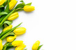 Spring flowers. Yellow tulips on white background top view copy space border