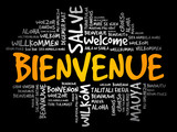 Bienvenue (Welcome in French) word cloud in different languages