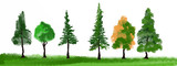 trees nature illustration design set green watercolors and grass