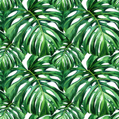 Watercolor seamless pattern of tropical leaves.
