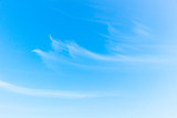 Fototapeta Na sufit - World Environment Day concept: white fluffy clouds in the blue sky © paul