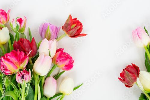 Leinwandbild Motiv Fresh tulips flowers