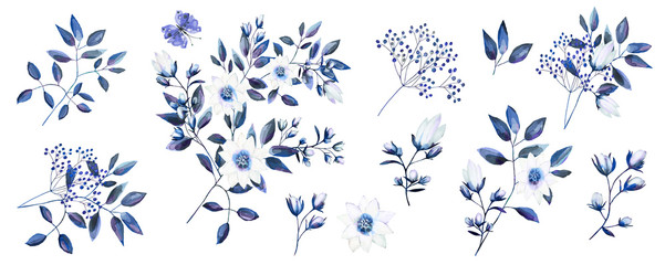 Watercolor drawing of a branch with leaves and flowers. Botanical illustration. Composition of blue flowers, colorful leaves, wild herbs. A set of bouquets, twigs, flower elements and garden he © Erenai