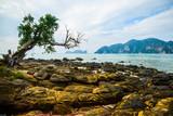 Beautiful sea landscape with tropical coast Thailand