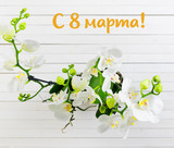 orchid on white boards. view from above.  in Russian the phrase