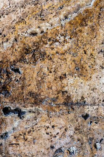 Real natural shell stone. shell texture. - 251201263