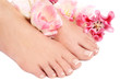 Woman's feet with french pedicure and pink flowers over white background