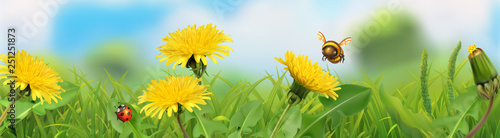 Spring landscape. Green grass and yellow dandelions. 3d vector horizontal panorama
