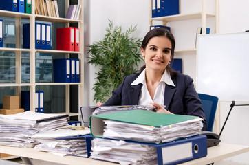 Businesswoman working in the office  © Elnur