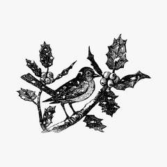 Winter bird in vintage style