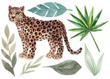 Set of leopard and tropical leaves. Trendy style. Exotic and jungle animal. Hand drawn watercolor illustration. Summer design for decor, print, printing on paper or fabric, web design, blog decoration