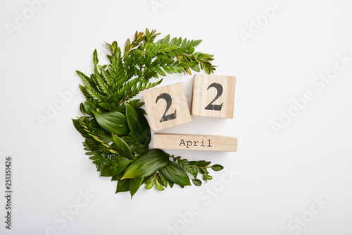 composition of fresh green fern leaves and wooden blocks calendar isolated on grey background, earth day concept