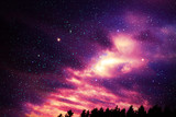 Fototapeta Na sufit - Colorful night sky with many stars above of trees silhouette. © Swetlana Wall