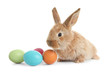 Leinwanddruck Bild - Adorable furry Easter bunny and colorful eggs on white background