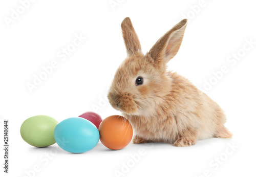 Leinwanddruck Bild Adorable furry Easter bunny and colorful eggs on white background
