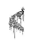 graffiti tropfen federn bunt dekorativ vogel silhouette umriss schatten pfau fasan federn groß männlich schön hübsch augen zoo wildtier comic cartoon clipart design