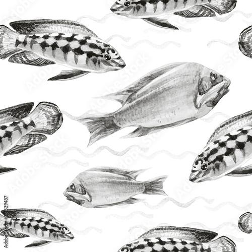 Seamless patterns with tropical fish © Svitlana