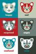 emotions_cat