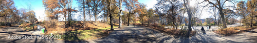 Panoramic view of Central Park on a beautiful winter day, New York City - 251599039