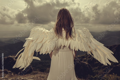 Back view of a woman with wings looking on horizon of mountains. angel - 251638480