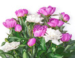 Bouquet of pink and white peonies isolated on white background. Top view. Flat lay.