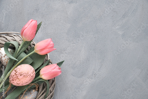 Springtime or Easter background with pink tulips and Easter eggs in wattle ring on grey concrete, text space - 251688864