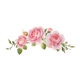 Watercolor rose vector omposition - 251804204